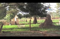 Catholic Diocese launches food security plan in Turkana